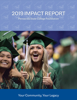 decorative image of 2019-impact , Impact Reports 2020-06-04 13:13:38